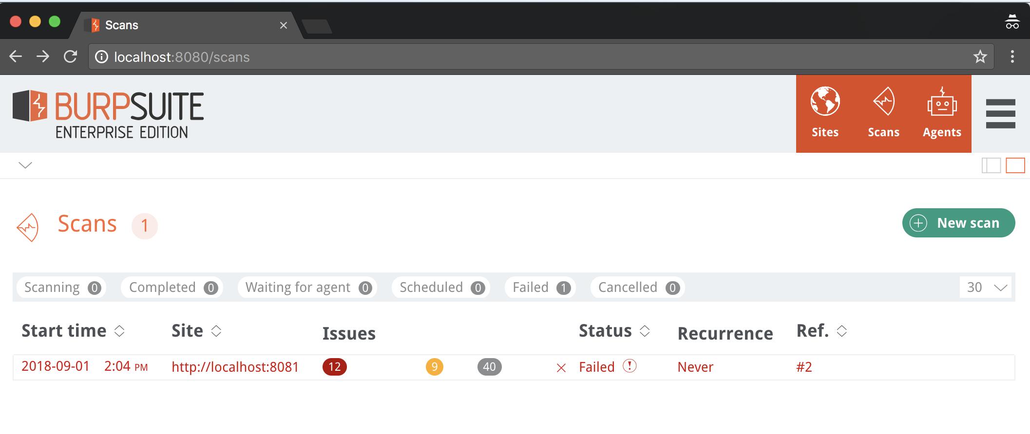 Burp's new Enterprise version and REST API